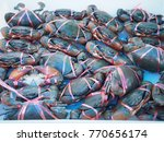 fresh crabs for sale in... | Shutterstock . vector #770656174