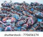 fresh crabs for sale in... | Shutterstock . vector #770656174
