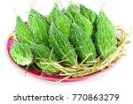 balsam apple  balsam pear ... | Shutterstock . vector #770863279