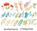 watercolor floral set. colorful ... | Shutterstock . vector #770964781
