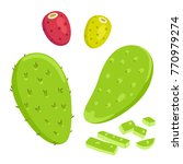 nopal cactus paddle  peeled and ... | Shutterstock .eps vector #770979274