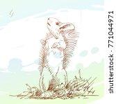 sketch of squirrel standing on...   Shutterstock .eps vector #771044971