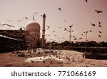 Small photo of hungry birds! Birds are gathering in front of a sacred architecture to satiate their hunger.