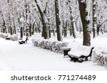 Snowy Benches And Bushes Under...