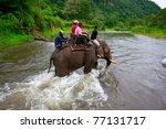 Tourist Ride On Thai Elephant...