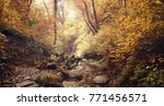 autumn forest in the mountains... | Shutterstock . vector #771456571