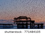 Murmuration Over The Ruins Of...