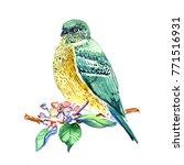 bird hand drawn. watercolor | Shutterstock . vector #771516931