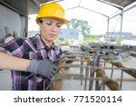female builder with stock rebar ... | Shutterstock . vector #771520114