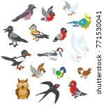 vector set of birds in cartoon... | Shutterstock .eps vector #771530041