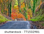 fall scenic route ayrshire... | Shutterstock . vector #771532981