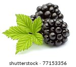 Blackberry with leaves on a white background - stock photo