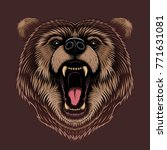 vector color angry bear head... | Shutterstock .eps vector #771631081