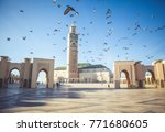 the pigeons soared over the... | Shutterstock . vector #771680605