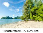 beautiful beach scenery with... | Shutterstock . vector #771698425