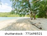 beautiful beach scenery with... | Shutterstock . vector #771698521