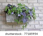 Hanging Outdoor Planter With An ...