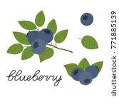 vector blueberry  flat design   Shutterstock .eps vector #771885139