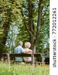 rear view of a romantic elderly ... | Shutterstock . vector #772012261