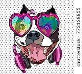 glamorous bulldog girl on t...   Shutterstock .eps vector #772138855