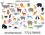big collection of wild jungle ... | Shutterstock .eps vector #772178905