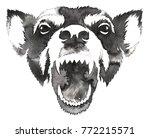 black and white monochrome... | Shutterstock . vector #772215571