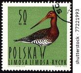 Poland   Circa 1964  A Stamp...