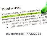 professional development... | Shutterstock . vector #77232736