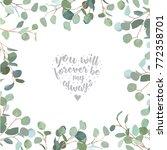 silver dollar eucalyptus... | Shutterstock .eps vector #772358701