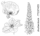 flower sketches collection | Shutterstock .eps vector #77237455