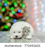 samoyed puppy embracing a... | Shutterstock . vector #772452631