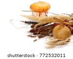 fall  autumn decoration with... | Shutterstock . vector #772532011