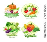 healthy food banners with... | Shutterstock .eps vector #772542901