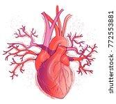 vector realistic red human... | Shutterstock .eps vector #772553881