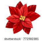 Beautiful Red Poinsettia Flowe...