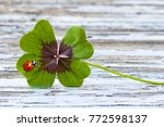 Stock photo four leaf clover with ladybug on wood copy space 772598137