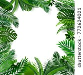 vector botanical  banner with... | Shutterstock .eps vector #772624021