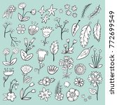 hand drawn flower decorative... | Shutterstock .eps vector #772699549