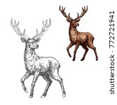 deer  reindeer or elk isolated... | Shutterstock .eps vector #772721941