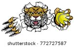 a wildcat angry animal sports... | Shutterstock .eps vector #772727587