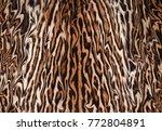 abstract feline fur background... | Shutterstock . vector #772804891