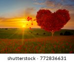 red heart shaped tree symbol of ... | Shutterstock . vector #772836631