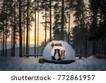 two dogs in a tent on snow in... | Shutterstock . vector #772861957