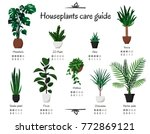 popular  common houseplants... | Shutterstock .eps vector #772869121