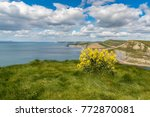 view from the south west coast... | Shutterstock . vector #772870081