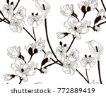 vector black decorative... | Shutterstock .eps vector #772889419