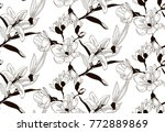 vector black decorative... | Shutterstock .eps vector #772889869