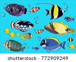 drawing fishes  illustration ... | Shutterstock .eps vector #772909249