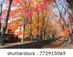 red tree landscape    Shutterstock . vector #772915069