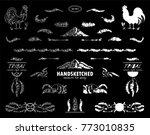 vector calligraphic elements... | Shutterstock .eps vector #773010835